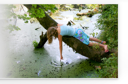 Fostering Resilience, Building Resilience in Children and Teens--Dr